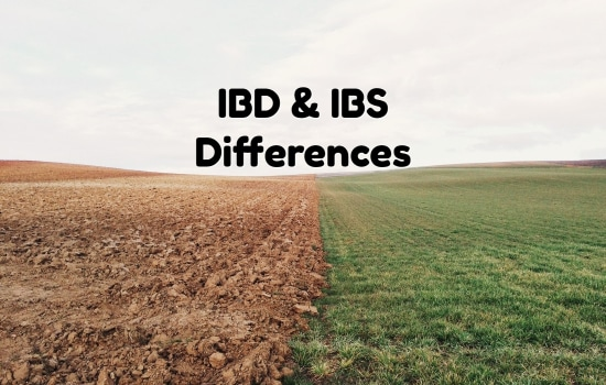 The Differences Between IBD and IBS