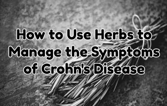 How to Use Herbs Such as White Willow and Slippery Elm Used to Manage the Symptoms of Crohn's Disease